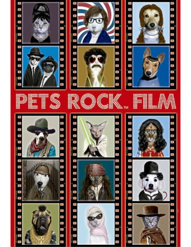 Pets Rock Film- 500 db-os puzzle- Educa