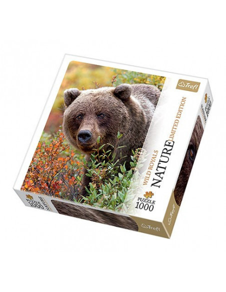 Grizzly medve - 1000 db-os puzzle - Trefl